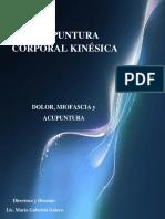 kinesica acupuntura