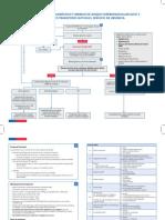 341397222-Anexo-1-Algoritmo-Acv-Manejo-Urgencia-Final.pdf