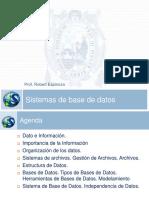 T01-Sistema de base de datos.pdf