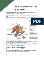 ANATOMIA Y FISIOLOGIA ANIMAL.docx