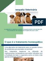 homeopatiaveterinriaslides