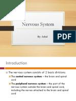 Nervous System(L5)