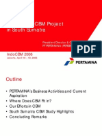 14 Pertamina CBM Project in South Sumatra