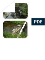 Imagenes de La Contaminacion Ambiental Por Desechos Quimicos