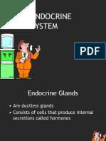 Endocrine System &Gland Chart