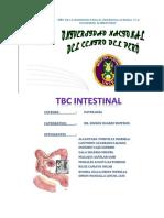 225973209-Tbc-Intestinal.docx