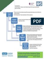 Lincs Nursing Adv. Dev Pathway DRAFT -V2 20.05.18