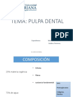 Seminario 3 Pulpa Dental-1