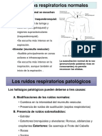 ESTERTORES PULMONARES Y RUIDOS ADVENTICIOS Y RESONCIA VOCAL WILSON MINCHALA.ppt