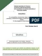 Semana 10. Glicólisis..ppt