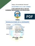 Monografia Neuroanatomia de La Depresion