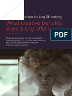 An Introduction to Log Shooting