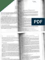 Evolucion_de_la_teoria_del_delito_Righi.pdf