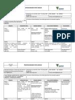 HS-D-23 PROFESIOGRAMA VICPAR 3.pdf