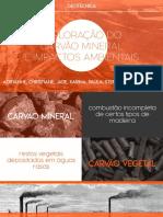 CARVAO MINERAL.pdf