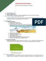 Estructura Del Plan de Negocio II Parte