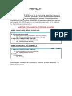 PRACTICA VACIA pupuche.docx