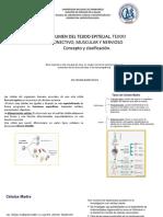 3. Resumen de Tejidos. Concepto y Clasificación (1)