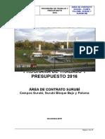 Programa de Trabajo Gestión 2016 - Surubí