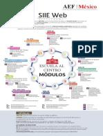 Siieweb Infografías 250618 (4)