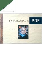 I-VI Cranial Nerves