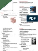 Pancreas Anulare