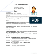 CV Roger Reyes 2M