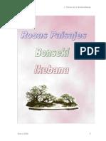 Bonsáis - Rocas Paisajes [Bonseki Ikebana].pdf