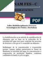 2deshidratados-110420163651-phpapp01.pdf