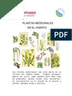 Plantas Medicinales en El Huerto