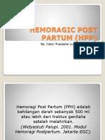 Hemoragic Post Partum (Hpp)