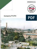 SC Siderurgica SA Hunedoara Company Profile 1994