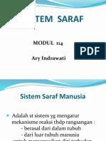 Sistem Saraf ( +gambar ).pptx