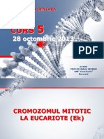 Genetica MD - Curs 5 28 octombrie 2013.pdf
