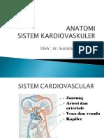 Anatomi Sistem Kardiovaskuler
