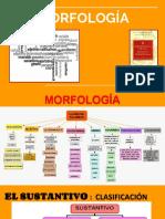 Morfología Rae