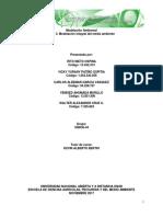 Consolidación Trabajo Colaborativo Fase 3