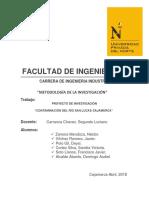 Proyecto de Investigación Contaminación Rio San Lucas