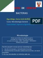 Bacterias CLASE 1