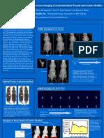 Fluorescence Based Gastrointestinal Imaging. Dr. Rao Papineni