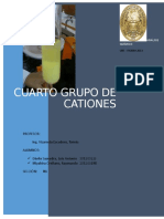 307401853-4to-Grupo-de-Cationes-1.docx