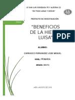 324448178-Proyecto-de-Investigacion-Hierba-Luisa.docx