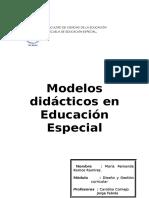 Modelos Didacticos en Educacion Especial