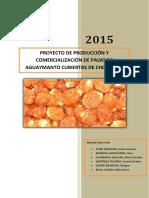 312126844 Proyecto de Inversion Privada Pasas de Aguaymanto (1)