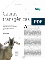 cabras transgenicas