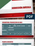 Produccion Aves Fredi Alvarez.pptx