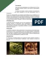 ASPECTOS PARASITOLOGICOS.docx