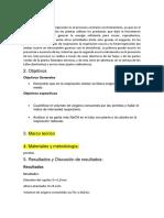 Informe Fisio 5