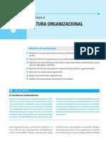 CAP.5 Cultura Organizacional CO-idalberto-chiavenato