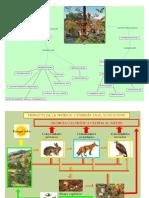 Relaciones Del Ecosistema
